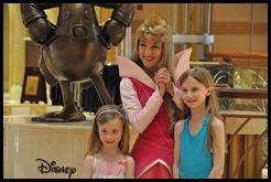 Disney Dream Sleeping Beauty